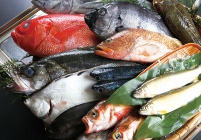 魚の臭い対策!手や服に付いた時に消す方法で効果的なのは?