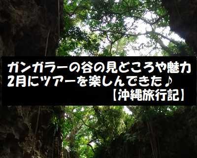ガンガラーの谷の見どころや魅力 2月にツアーを楽しんできた【沖縄旅行記】