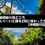 斎場御嶽の見どころ さんぐーいと緑で2月に癒されてきた【沖縄旅行記】