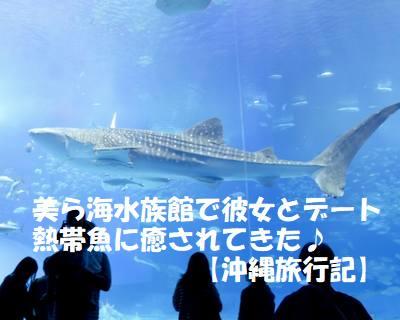 美ら海水族館に彼女とデートで行って熱帯魚に癒されてきた【沖縄旅行記】