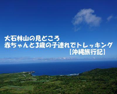 大石林山の見どころ 赤ちゃんと3歳の子供連れで行ってきた【沖縄旅行記】