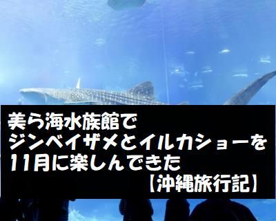 美ら海水族館でジンベイザメとイルカショーを11月に楽しんできた【沖縄旅行記】