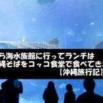 美ら海水族館に行ってランチは沖縄そばをコッコ食堂で食べてきた【沖縄旅行記】