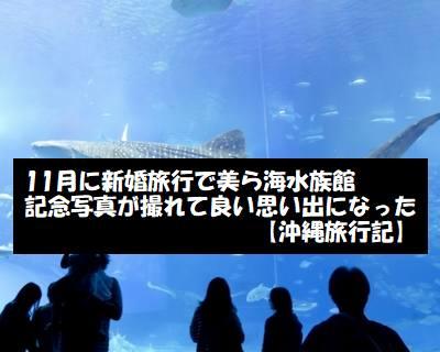 美ら海水族館へ新婚旅行で11月に行って記念写真を撮ってきた【沖縄旅行記】