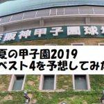 夏の甲子園2019のベスト4を予想!注目校が少なく混戦か?